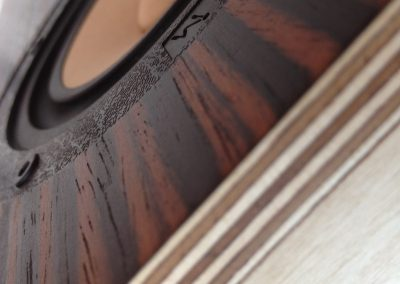 Blackwoods_2 Tone_5