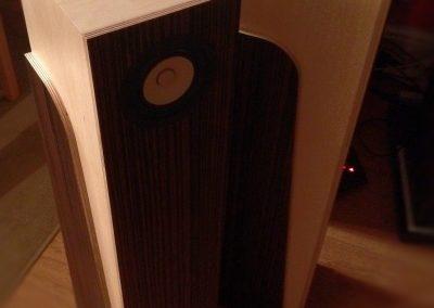 Blackwoods_2-Tone Light_EAR4